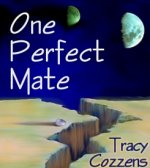 One Perfect Mate