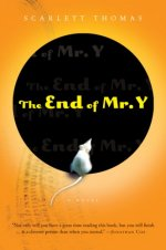 The End of Mr Y
